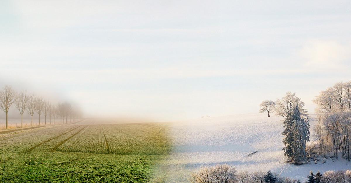 Winter-Herbst-Bild ©Stefan Widua, Blaise Vonlanthen, unsplash.com