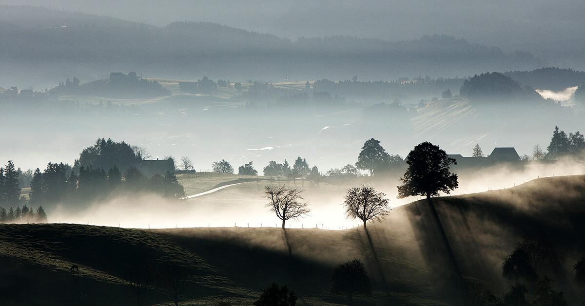 Nebel im Tal © unsplash.com
