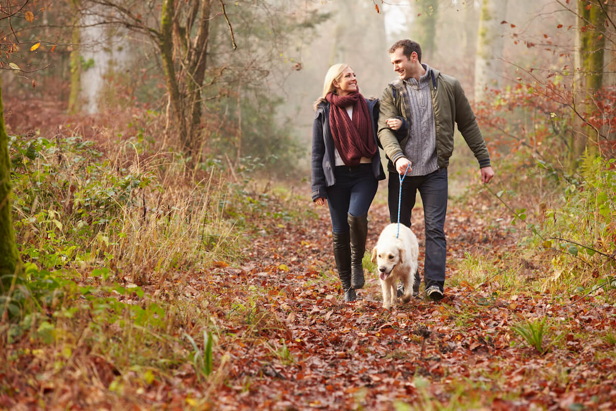 Paar im Wald mit Hund ©shutterstock.com/Monkey Business Images - https://www.shutterstock.com/de/image-photo/couple-walking-dog-through-winter-woodland-199351532