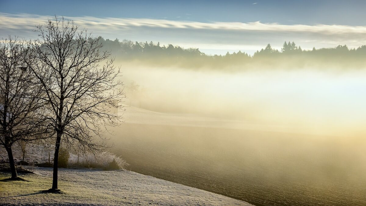 Morgendliche Landschaft ©pixabay.com