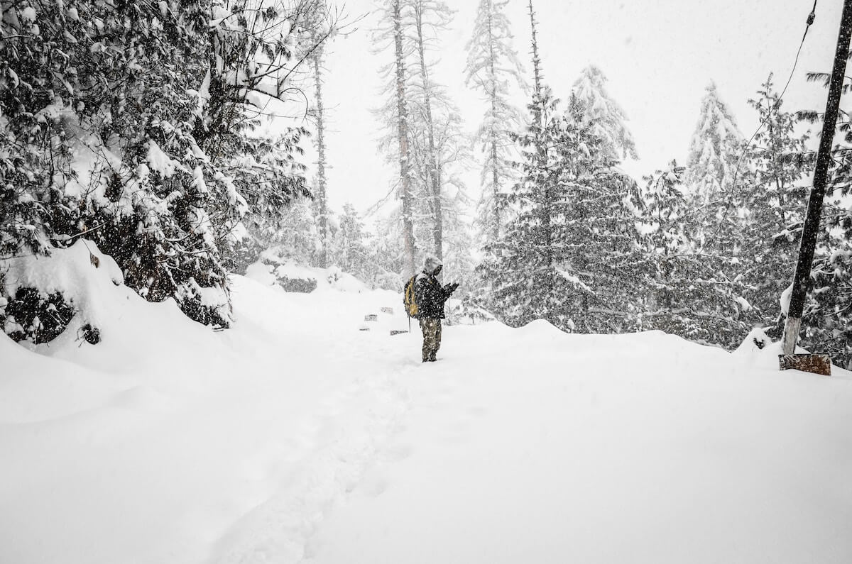 Schneefall im Wald ©unsplash.com -https://unsplash.com/photos/MTHDC2LrYJI
