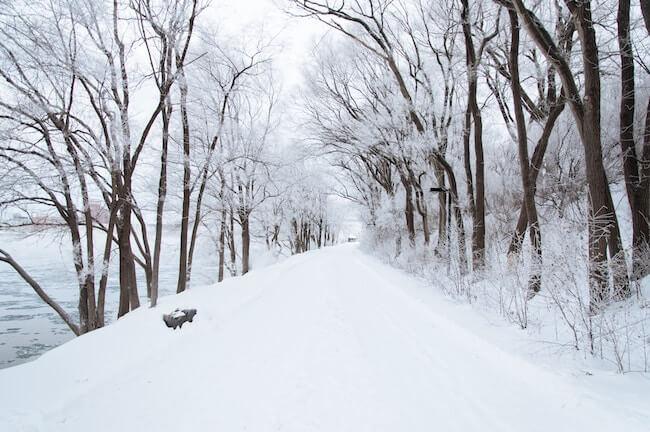 Schneebedeckte Straße mit Bäumen. @unsplash.com