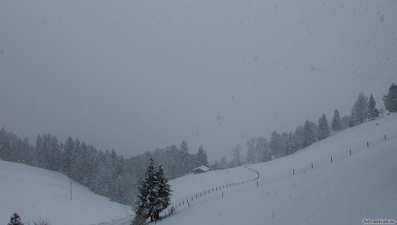 Starker Schneefall © www.foto-webcam.eu