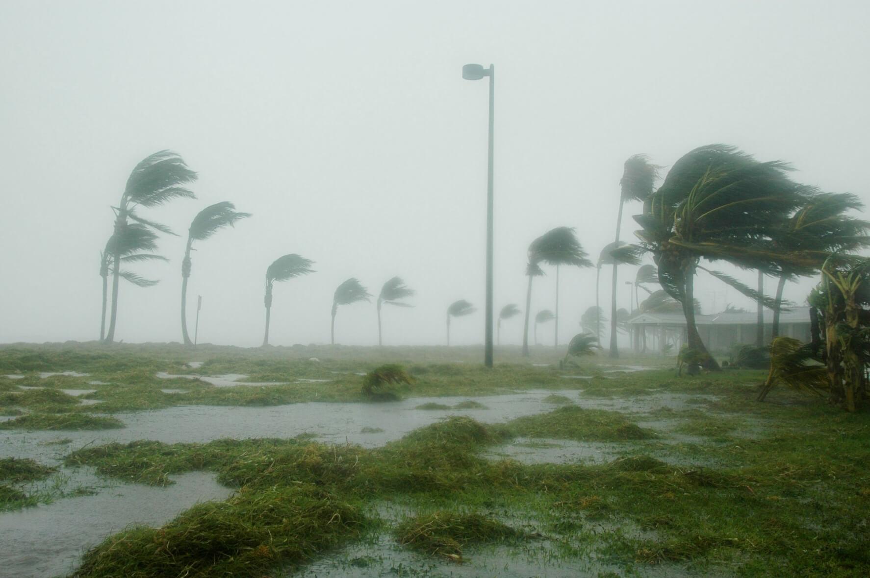 Tropischer Strum