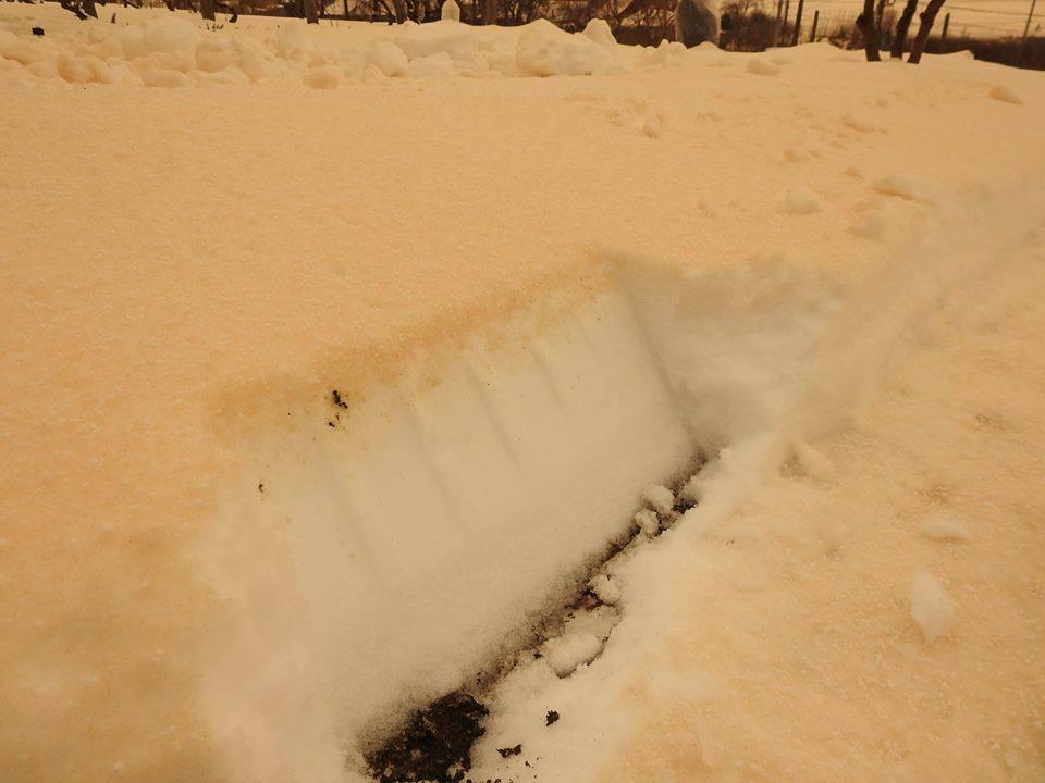 Blutschnee in Südosteuropa. © facebook, Meteo Moldova