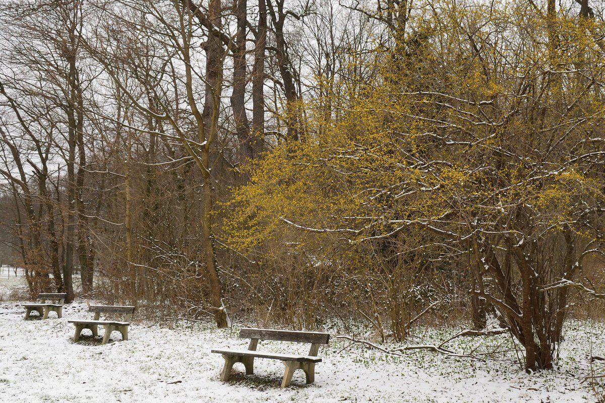 Nassschnee im Frühling. © Nikolas Zimmermann