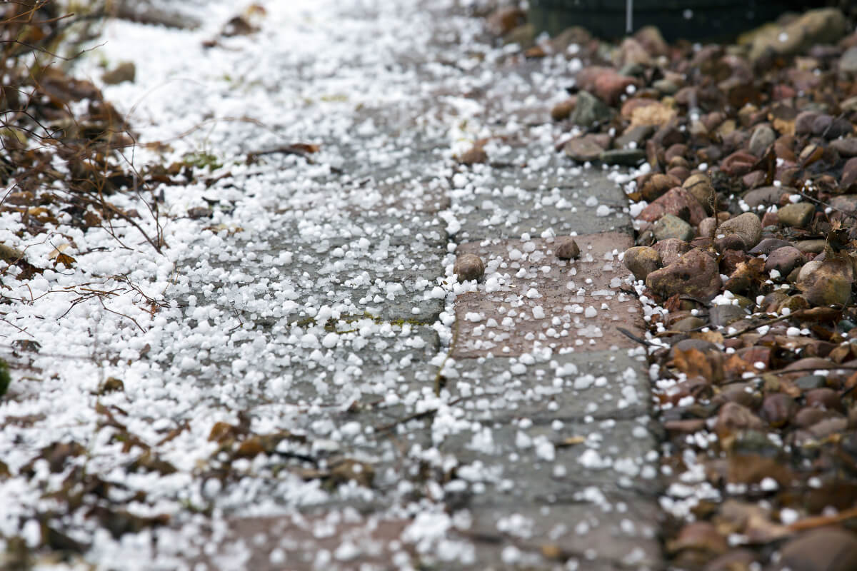 Graupelkörner auf dem Boden©Jne Valokuvaus