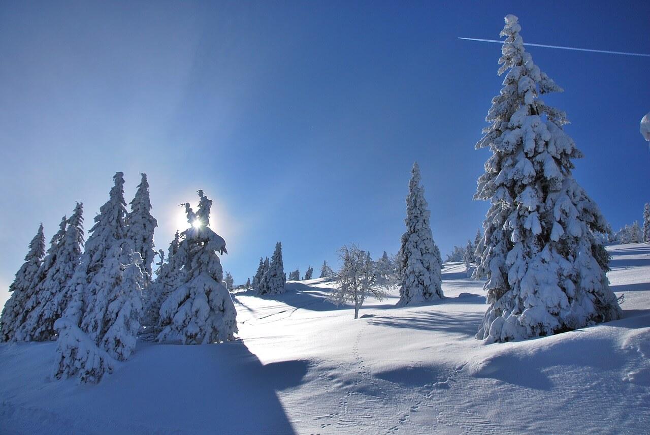 Tief verschneite Winterlandschaft. © pixabay.com, kossi007