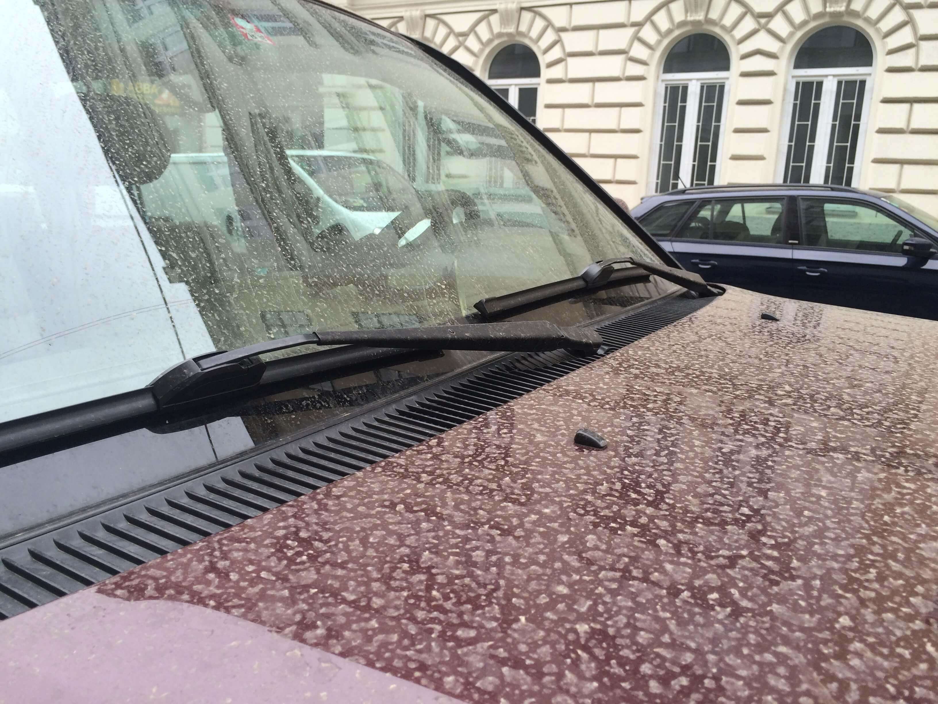Niedergeschlagener Saharastaub auf Autos in Wien © Steffen Dietz, UBIMET