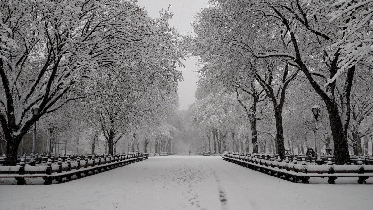 Schnee Central Park Erik Pindrock, Ubimet