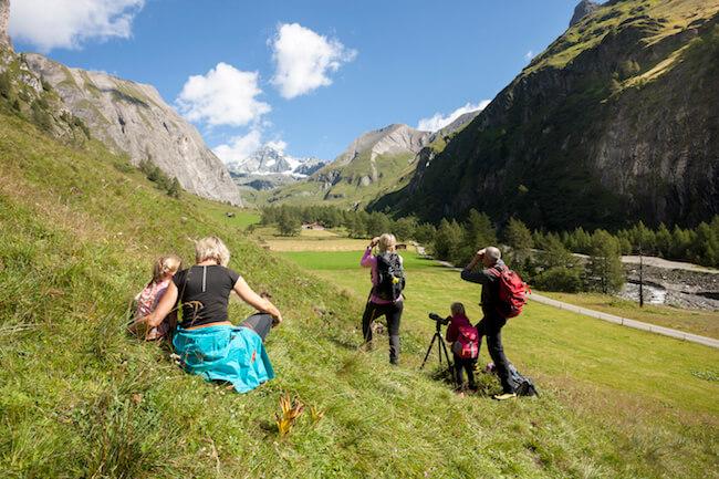 Wildtierbeobachtung im Nationalpark in Kals am Großglockner, (c) Martin Lugger, Nationalpark Hohe Tauern