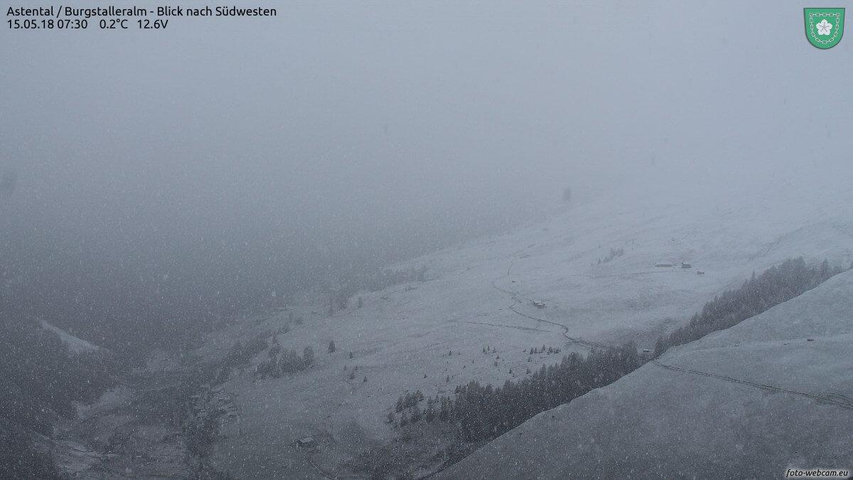 Schneefall in Kärnten in etwa 2100 m Höhe. © www.foto-webcam.eu