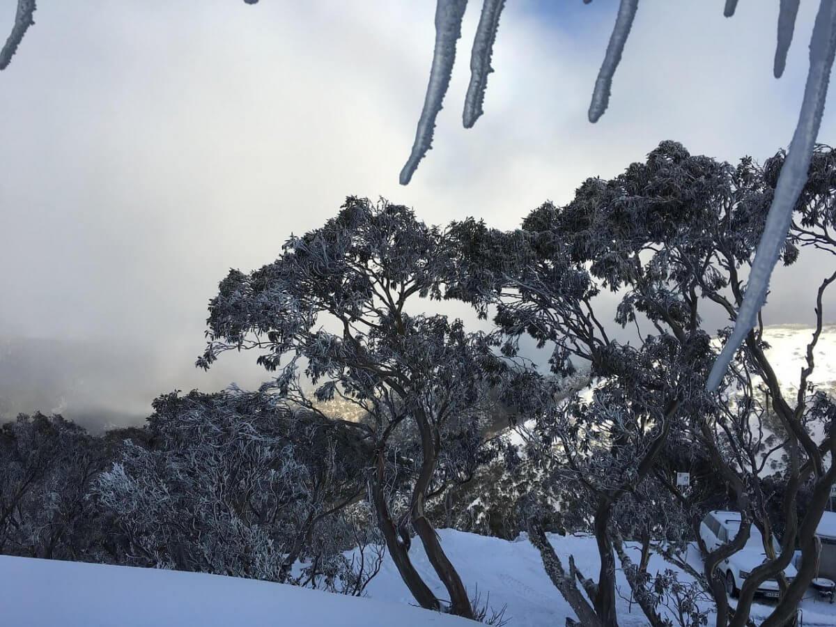 Schnee in den Australischen Alpen ©pixabay