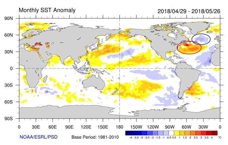Anomalie der Wassertemperaturen im letzten Monat. © NOAA