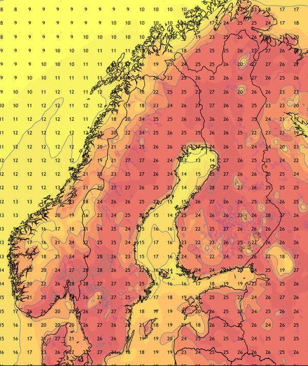 Prognostizierte Maximaltemperatur vom 12. Juli ©Ubimet/NCEP