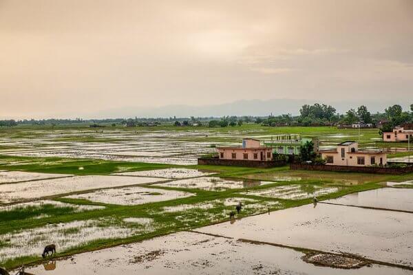 Der schlimmste Monsun seit 100 Jahren