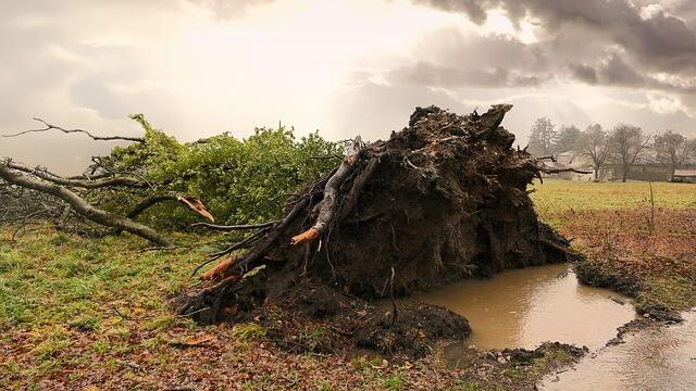 Sturm weht mit Böen bis zu 120 km/h.