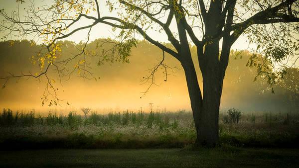 Herbstlicht im September