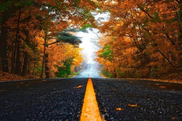 Die 5 größten Herausforderungen für Autofahrer im Herbst