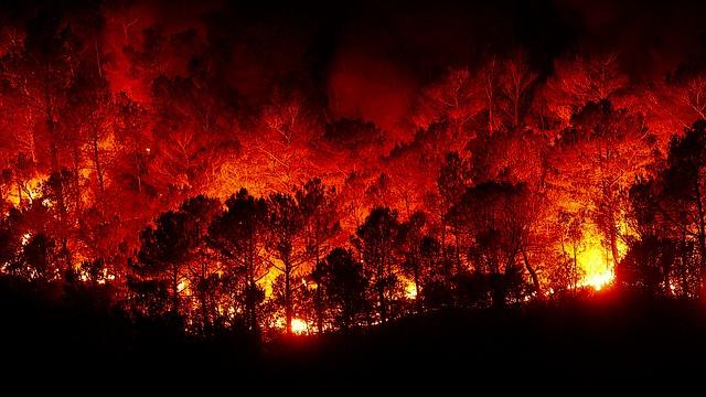 Waldbrand in der Toskana