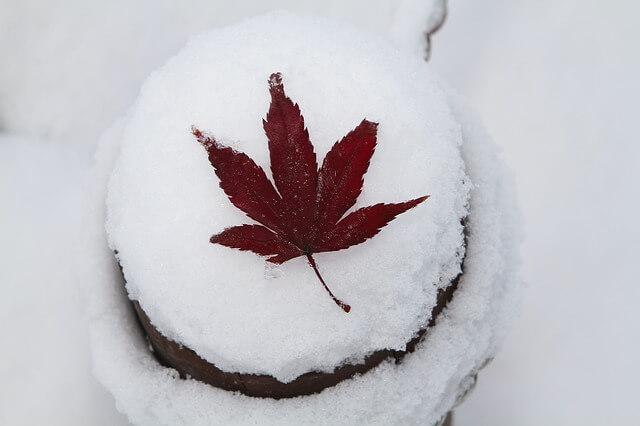 Im Oktober kann bereits der erste Schnee fallen.