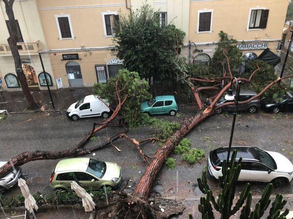 Umgestürzte Bäume in Terracina südlich von Rom