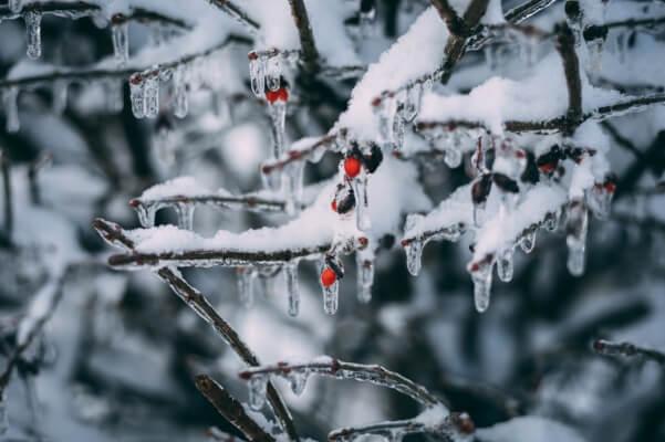 In Oberösterreich und Niederösterriech gibt es gefrierenden Regen und Schnee
