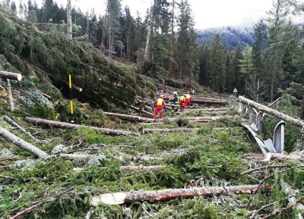 Böen bis 200 km/h: Extreme Schäden durch Sturm VAIA in den Alpen