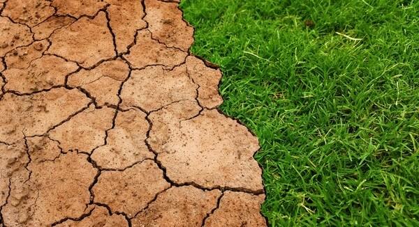 Klimawandel @ https://pixabay.com/en/users/Tumisu-148124/