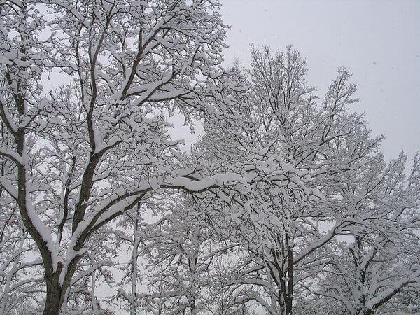 Neuschnee in Klagenfurt