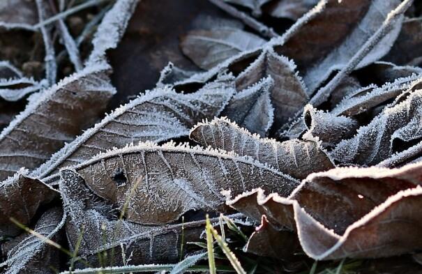Kalte Luft aus Russland erfasst Deutschland