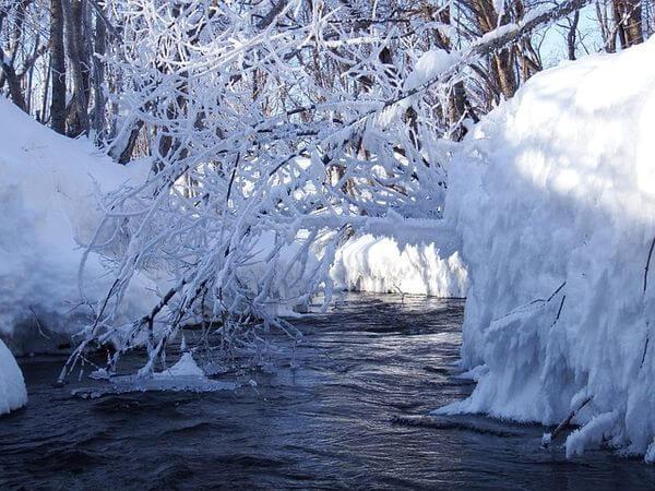 Kälte und Schnee - typisch Dezember