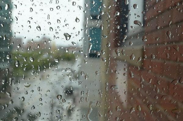 Die kommende Woche wird mild und nass.