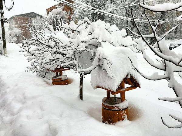 Schneemassen am Balkan @ https://www.facebook.com/severeweatherEU
