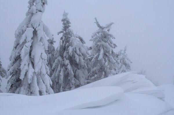 Schnee im Bergland. C Nikolas Zimmermann