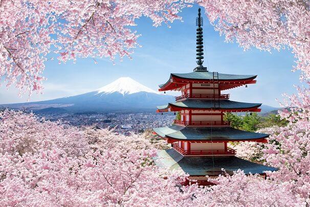 Hanami – Das japanische Kirschblütenfest
