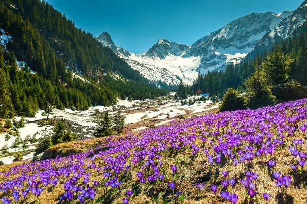Ausgezeichnetes Bergwetter zu Ostern