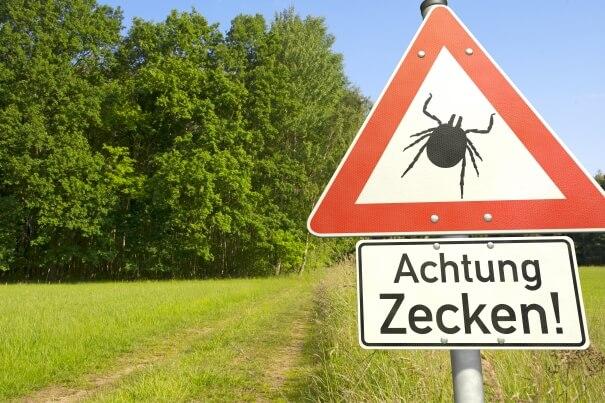 Feuchtwarmes Wetter: Vorsicht Zecken!