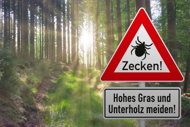 Vorsicht Zecken, hohes Gras und Unterholz meiden
