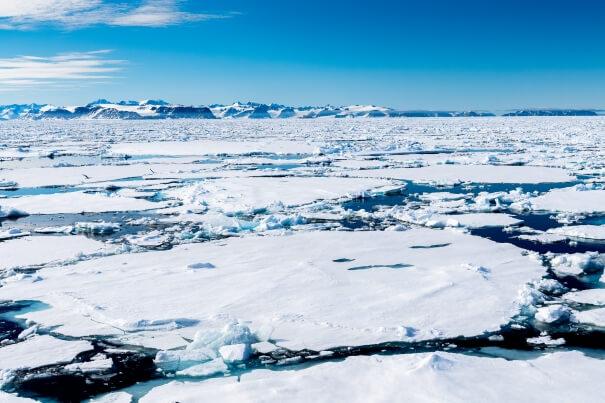 Aktuelle Eisbedeckung in der Arktis