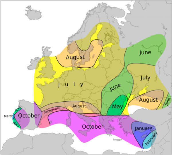 Monate mit den meisten Tornados in Europa.