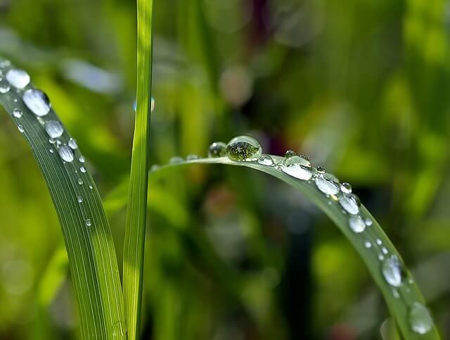 Im Süden und Südwesten gab es deutlich mehr Regen als sonst im Mai.
