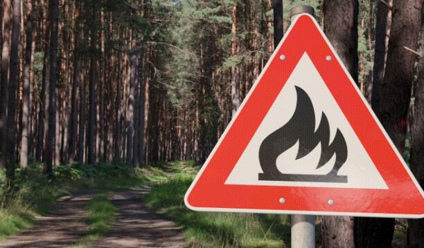 Feuer im Wald verboten