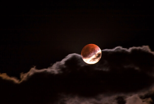 Die schönsten Bilder der Mondfinsternis