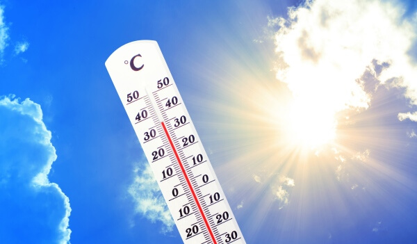 Hitzewelle in Zahlen
