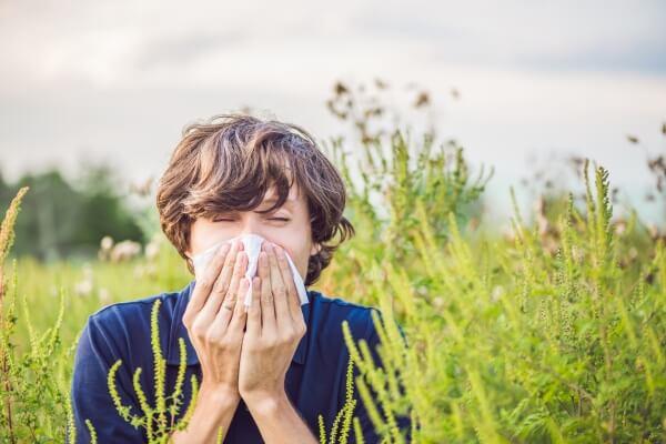 Die Pollensaison geht ins letzte Drittel