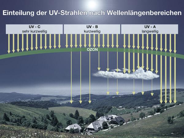 Vor allem UV-A-Strahlung dringt bis zum Erdboden durch.