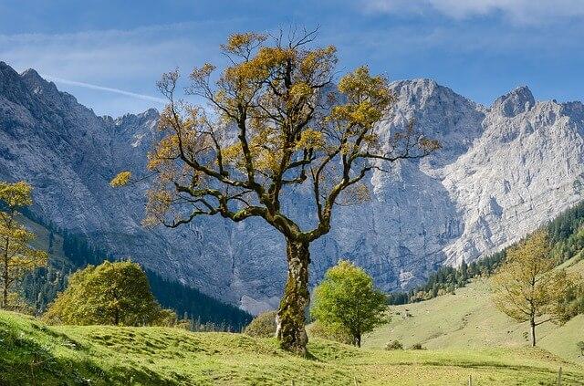 Perfektes Wanderwetter in den Alpen.
