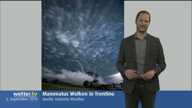 Wilde Wetter Welt 9. September 2019