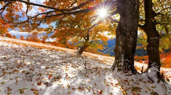 Zur Wochenmitte Stippvisite vom Winter